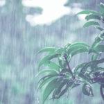 台風で避難?判断方法と注意点