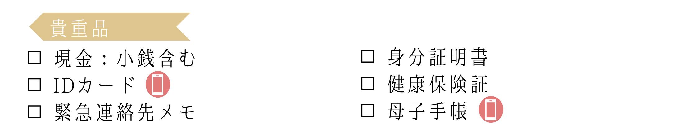 0次の備えリスト_貴重品