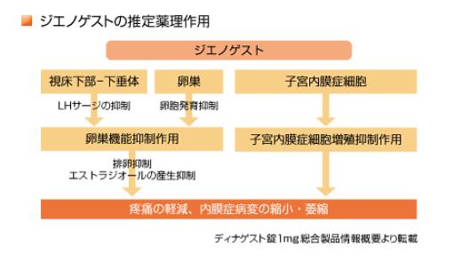 ディナゲスト錠の薬理作用_持田製薬