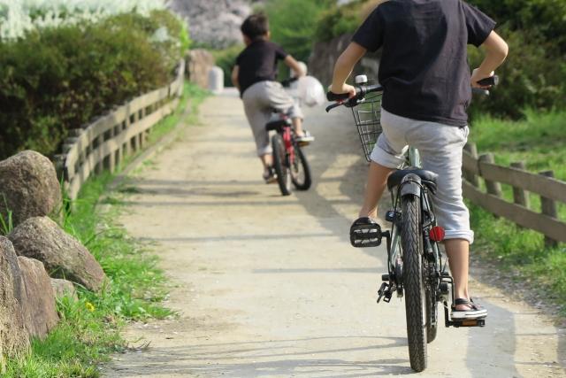 自転車に乗る男の子の後ろ姿